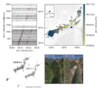 Research Paper on Identifying landslides from continuous seismic surface waves: a case study of multiple small-scale landslides triggered by Typhoon Talas, 2011